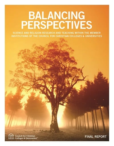 Balancing Perspectives Report Full